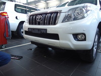 Защита радиатора для Toyota Land Cruiser Prado 150 2009-2014 (черный)